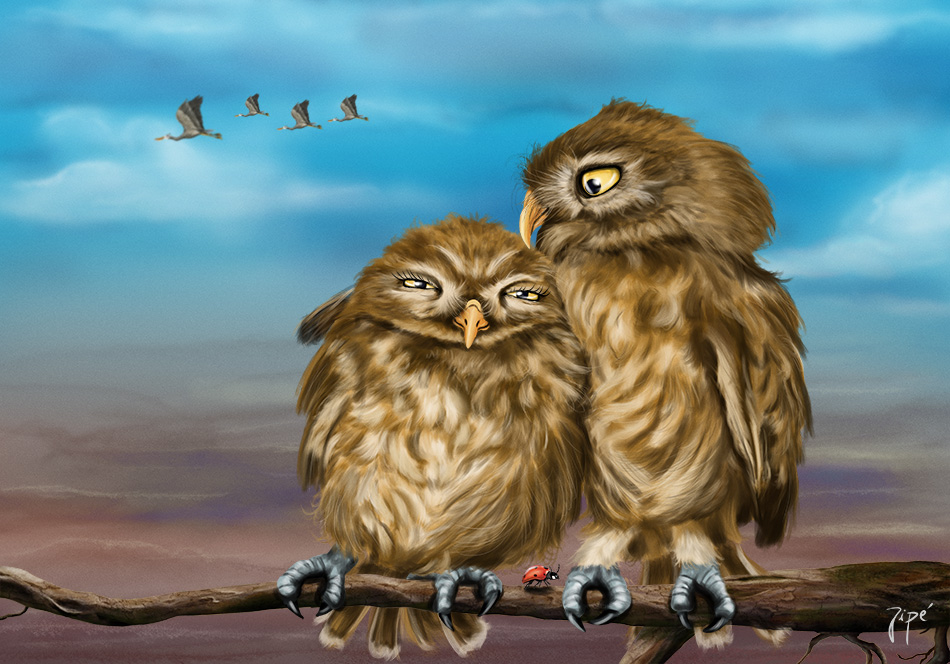 love-is-owl2-web