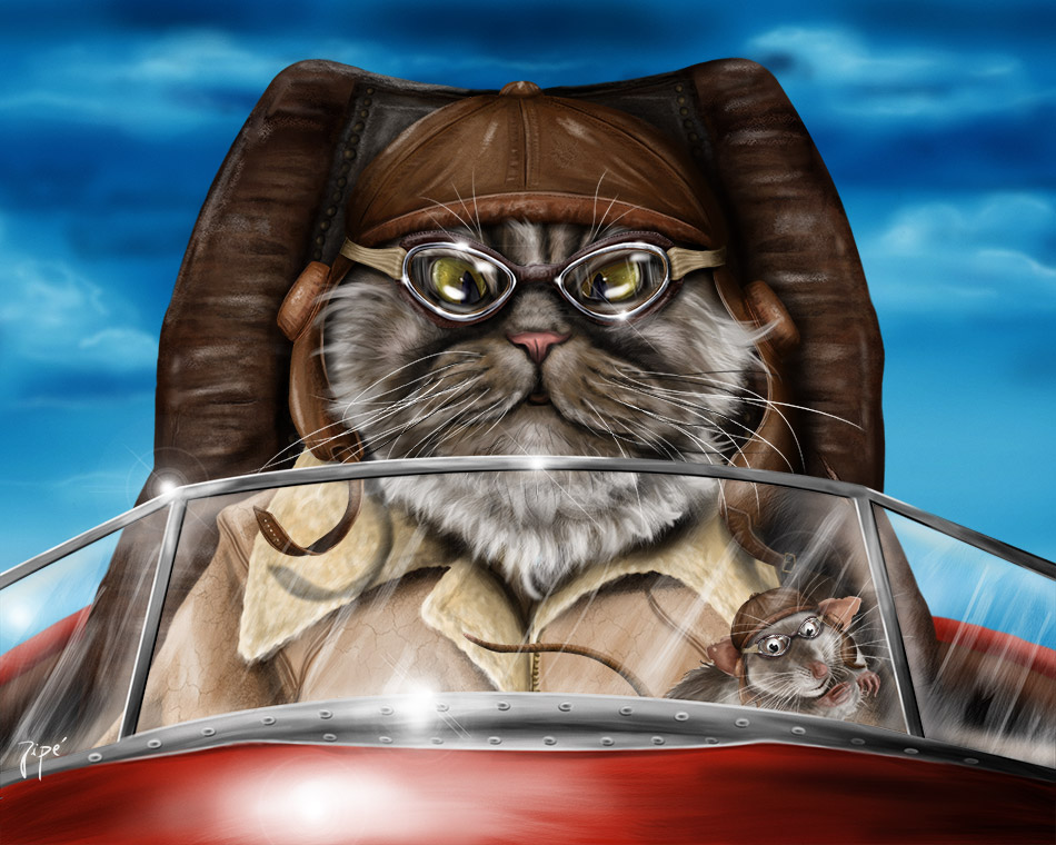 chat-pilote