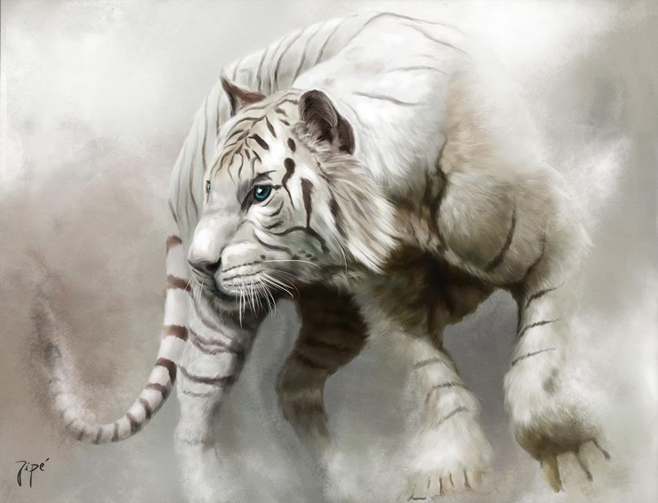 tigre-web